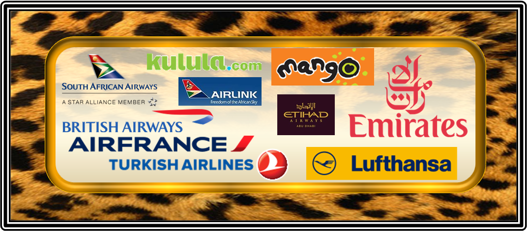 Airlines Flying African Skies